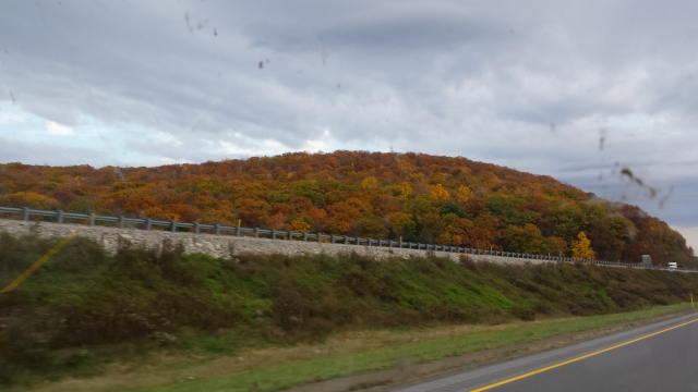 Fall Colors in New Hampshire....or Maybe Pennsylvania