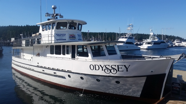 Our Whale Watching Boat (Orcas)