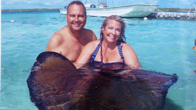 Swimming with the Sting Rays